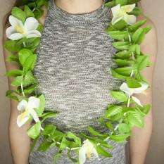 Гавайские леи Нимфа зеленый с белым