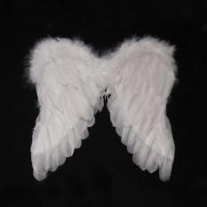 Крылья Амура маленькие 40х40см (белые)