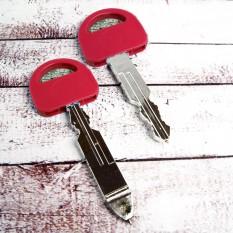 Ручка Ключ (малиновая)